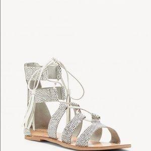 Sole Society Calla Gladiator sandals